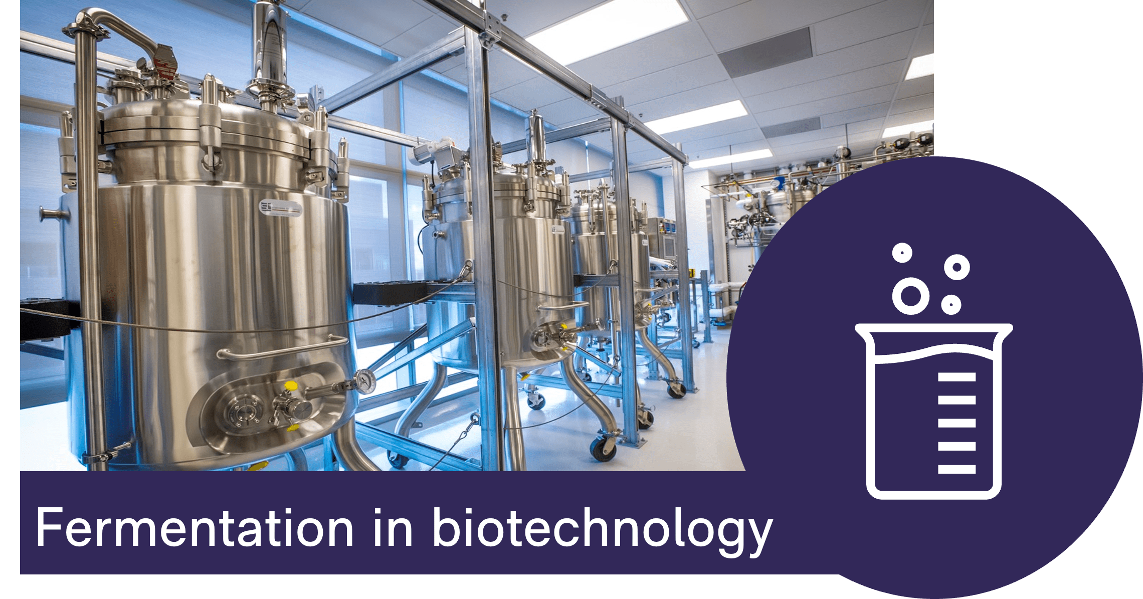 BactoBox is a game-changer for fast, reliable and easy tracking of cell counts in fermentation