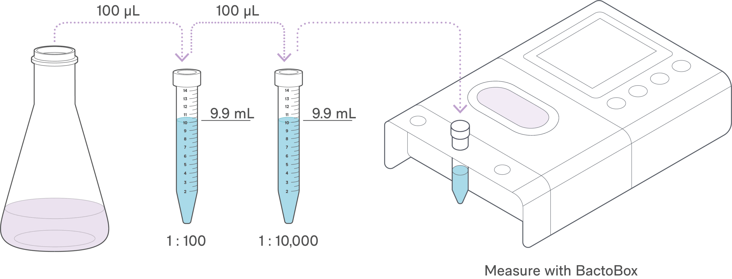 Fermentation Dilution step by step (version 2)